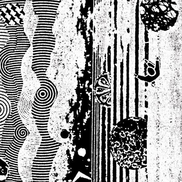 Nightcrawlers, The - The Biophonic Boombox Recordings (2LP)